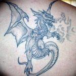 Фото татуировки дракон от 24.09.2018 №160 - dragon tattoo - tattoo-photo.ru