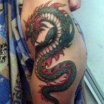 Фото татуировки дракон от 24.09.2018 №291 - dragon tattoo - tattoo-photo.ru