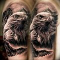 Фото тату беркут 10.10.2018 №069 - tattoo eagle - tattoo-photo.ru