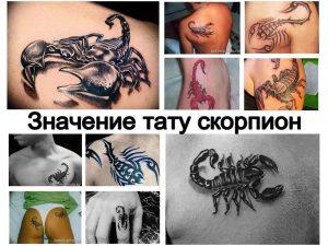 Значение тату скорпион - информация и фото примеры готовых рисунков татуировки