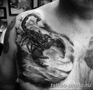 Фото рисунка скорпион 24.11.2018 №044 - photo tattoo scorpion - tattoo-photo.ru