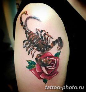 Фото рисунка скорпион 24.11.2018 №245 - photo tattoo scorpion - tattoo-photo.ru
