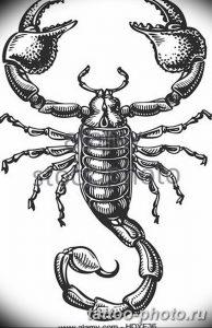 Фото рисунка скорпион 24.11.2018 №252 - photo tattoo scorpion - tattoo-photo.ru
