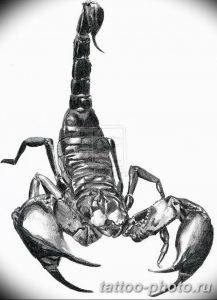 Фото рисунка скорпион 24.11.2018 №262 - photo tattoo scorpion - tattoo-photo.ru