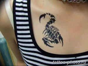 Фото рисунка скорпион 24.11.2018 №279 - photo tattoo scorpion - tattoo-photo.ru