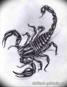 Фото рисунка скорпион 24.11.2018 №319 - photo tattoo scorpion - tattoo-photo.ru