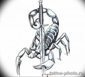 Фото рисунка скорпион 24.11.2018 №328 - photo tattoo scorpion - tattoo-photo.ru