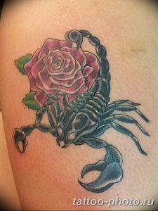 Фото рисунка скорпион 24.11.2018 №346 - photo tattoo scorpion - tattoo-photo.ru