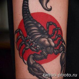 Фото рисунка скорпион 24.11.2018 №352 - photo tattoo scorpion - tattoo-photo.ru