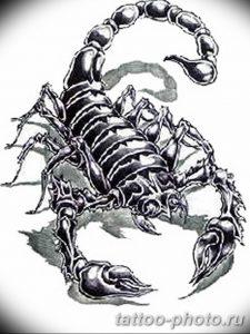 Фото рисунка скорпион 24.11.2018 №357 - photo tattoo scorpion - tattoo-photo.ru