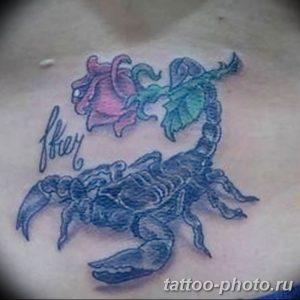 Фото рисунка скорпион 24.11.2018 №365 - photo tattoo scorpion - tattoo-photo.ru