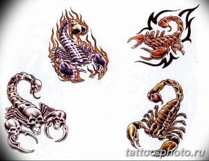 Фото рисунка скорпион 24.11.2018 №410 - photo tattoo scorpion - tattoo-photo.ru