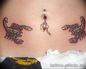 Фото рисунка скорпион 24.11.2018 №452 - photo tattoo scorpion - tattoo-photo.ru