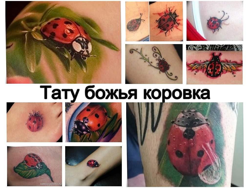 Значение тату божья коровка - история рисунка и фото примеры готовых татуировок