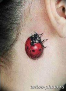 фото идея тату божья коровка 22.12.2018 №027 - photo ladybug tattool- tattoo-photo.ru