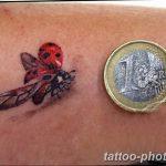 фото идея тату божья коровка 22.12.2018 №043 - photo ladybug tattool- tattoo-photo.ru