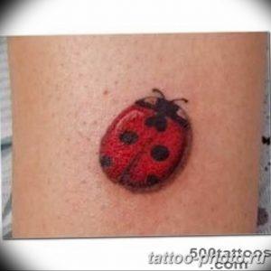 фото идея тату божья коровка 22.12.2018 №045 - photo ladybug tattool- tattoo-photo.ru