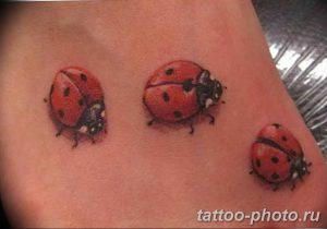 фото идея тату божья коровка 22.12.2018 №058 - photo ladybug tattool- tattoo-photo.ru