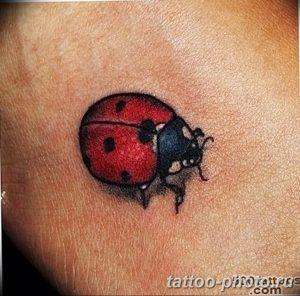 фото идея тату божья коровка 22.12.2018 №085 - photo ladybug tattool- tattoo-photo.ru