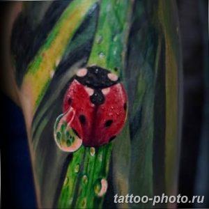 фото идея тату божья коровка 22.12.2018 №117 - photo ladybug tattool- tattoo-photo.ru