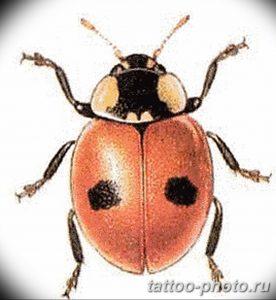 фото идея тату божья коровка 22.12.2018 №120 - photo ladybug tattool- tattoo-photo.ru