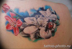 фото идея тату божья коровка 22.12.2018 №127 - photo ladybug tattool- tattoo-photo.ru