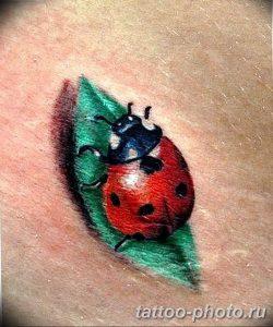 фото идея тату божья коровка 22.12.2018 №139 - photo ladybug tattool- tattoo-photo.ru