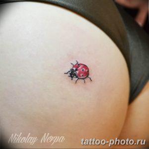 фото идея тату божья коровка 22.12.2018 №144 - photo ladybug tattool- tattoo-photo.ru