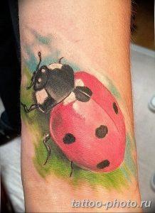 фото идея тату божья коровка 22.12.2018 №147 - photo ladybug tattool- tattoo-photo.ru