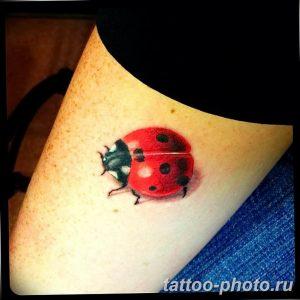 фото идея тату божья коровка 22.12.2018 №157 - photo ladybug tattool- tattoo-photo.ru