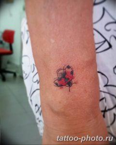фото идея тату божья коровка 22.12.2018 №183 - photo ladybug tattool- tattoo-photo.ru