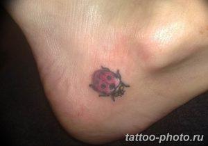фото идея тату божья коровка 22.12.2018 №212 - photo ladybug tattool- tattoo-photo.ru