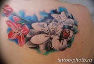 фото идея тату божья коровка 22.12.2018 №242 - photo ladybug tattool- tattoo-photo.ru