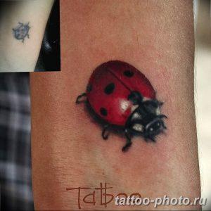 фото идея тату божья коровка 22.12.2018 №287 - photo ladybug tattool- tattoo-photo.ru