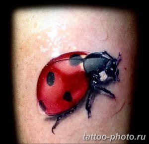фото идея тату божья коровка 22.12.2018 №300 - photo ladybug tattool- tattoo-photo.ru