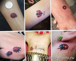 фото идея тату божья коровка 22.12.2018 №306 - photo ladybug tattool- tattoo-photo.ru