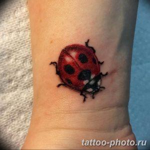 фото идея тату божья коровка 22.12.2018 №310 - photo ladybug tattool- tattoo-photo.ru