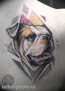 Фото тату бульдог 27.02.2019 №015 - Photo tattoo bulldog - tattoo-photo.ru