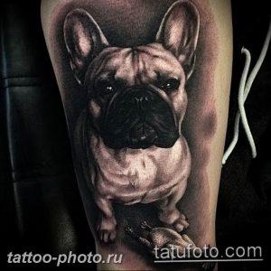 Фото тату бульдог 27.02.2019 №099 - Photo tattoo bulldog - tattoo-photo.ru