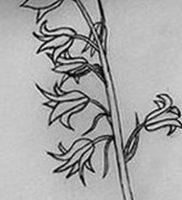 Фото тату цветок колокольчики 15.04.2019 №044 — ideas flower bells tattoo — tattoo-photo.ru