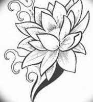 фото тату кувшинка 30.04.2019 №092 — tattoo waterlily — tattoo-photo.ru