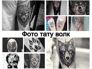 Фото тату волк - коллекция рисунков тату и информация про смысл