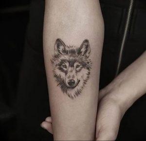Фото тату волк 20.05.2019 №020 - photo tattoo wolf - tattoo-photo.ru