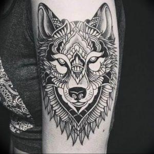 Фото тату волк 20.05.2019 №031 - photo tattoo wolf - tattoo-photo.ru