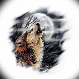 Фото тату волк 20.05.2019 №060 - photo tattoo wolf - tattoo-photo.ru