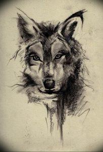 Фото тату волк 20.05.2019 №085 - photo tattoo wolf - tattoo-photo.ru