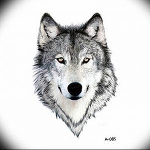 Фото тату волк 20.05.2019 №098 - photo tattoo wolf - tattoo-photo.ru