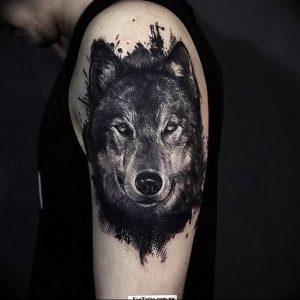 Фото тату волк 20.05.2019 №139 - photo tattoo wolf - tattoo-photo.ru