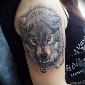 Фото тату волк 20.05.2019 №147 - photo tattoo wolf - tattoo-photo.ru