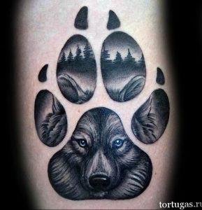 Фото тату волк 20.05.2019 №149 - photo tattoo wolf - tattoo-photo.ru